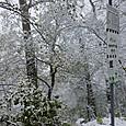 雪景色のホーエンツァレルン城