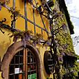 ツェーレンベルク村のワインセラー