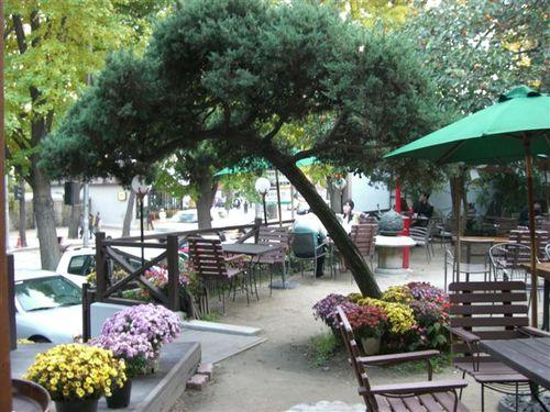 ジンソン・ブックカフェ