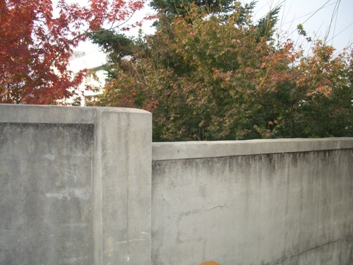 ユジンとチュンサンが乗り越えた学校の塀