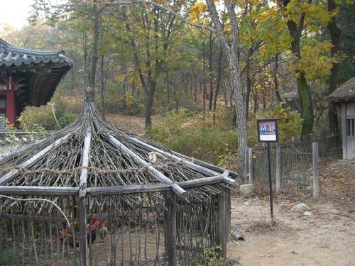 錦鶏の飼育場