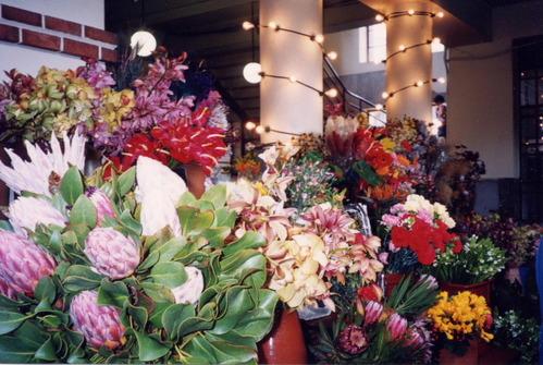 ポルトガル・マデイラ島/花市場