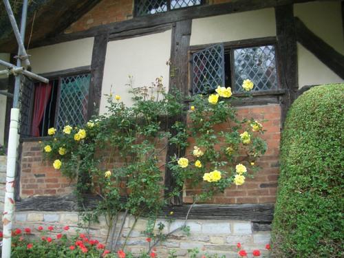 アン・ハサウエィの家